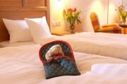 Hotel_Gut_Apeldoer_1